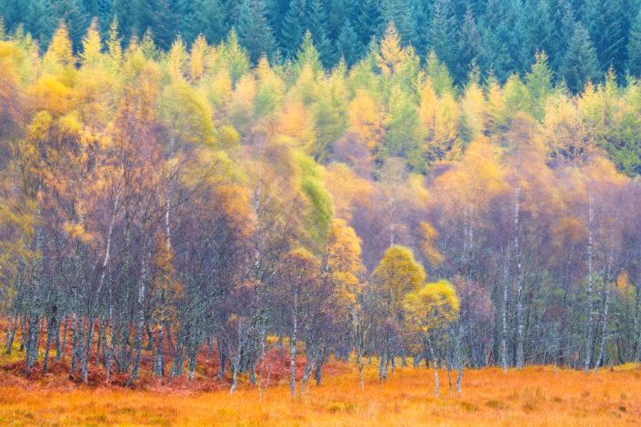 autunno scozia